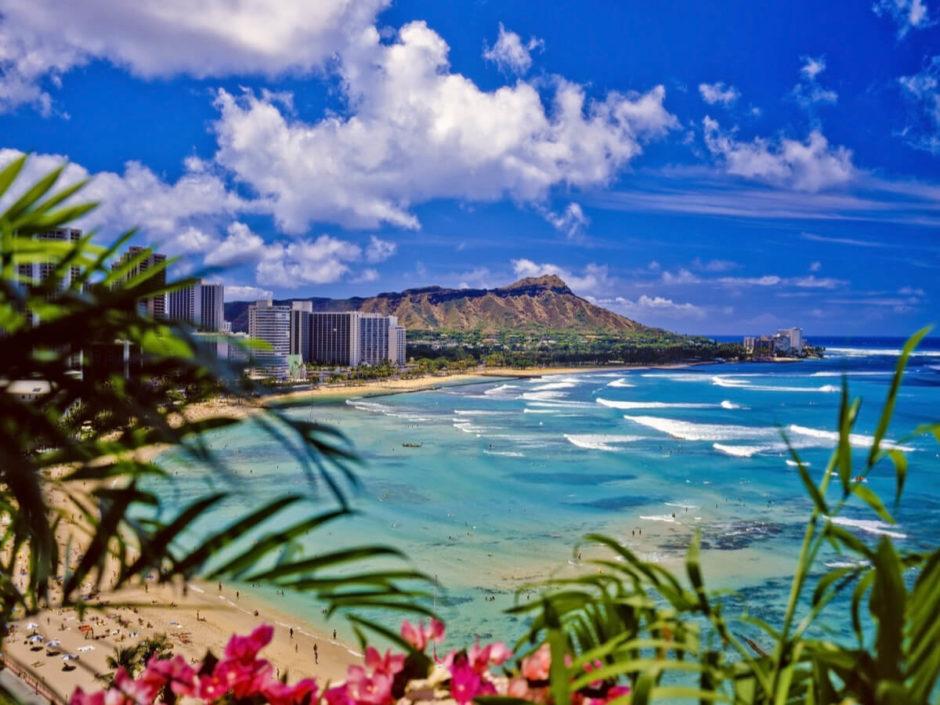 ハワイ 観光 おすすめ