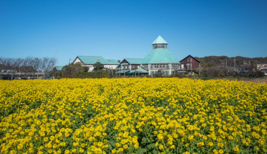 千葉県観光おすすめ10選!一人旅やカップルに人気のスポットを大公開
