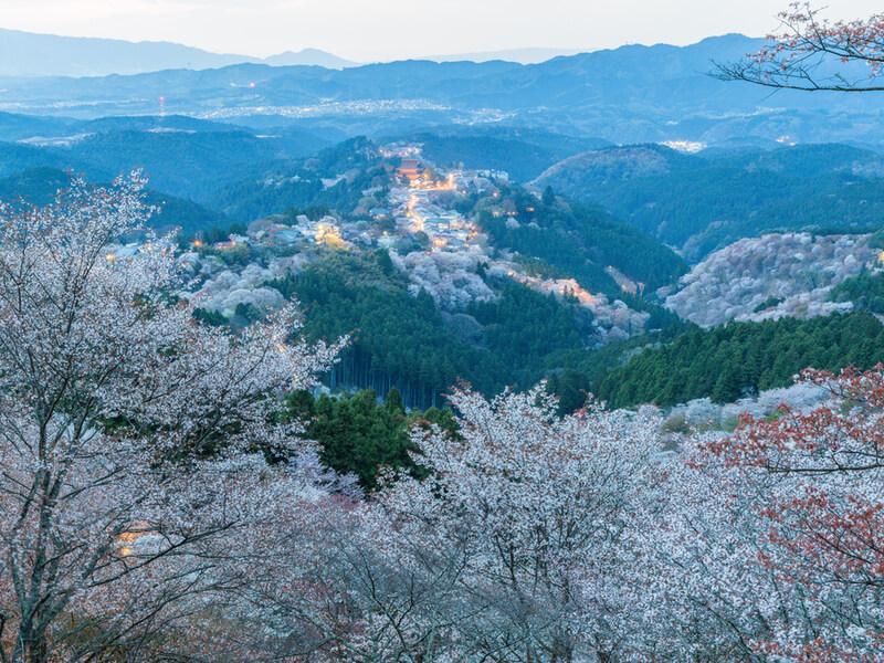 奈良県の基本情報