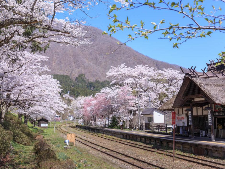 福島県 観光 おすすめ